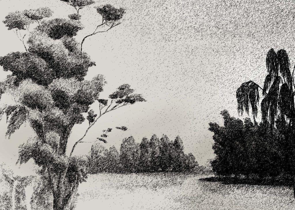 Blanco y negro, dibujo a lápiz.